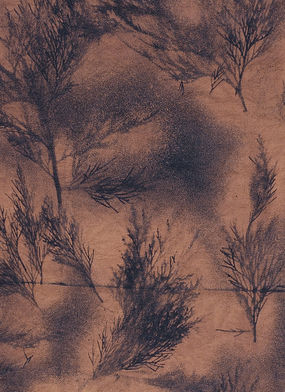 Cedar-bough fabric